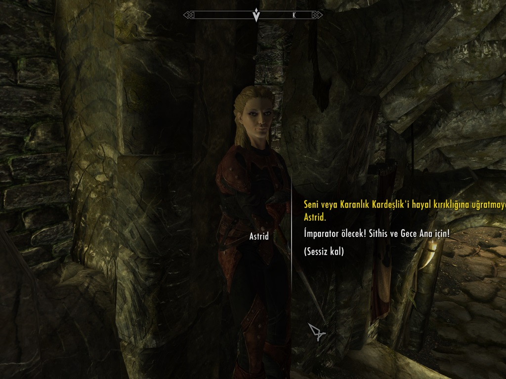 The Elder Scrolls V Skyrim TRSS 6